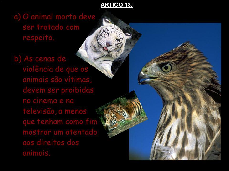 O animal morto deve ser tratado com respeito.