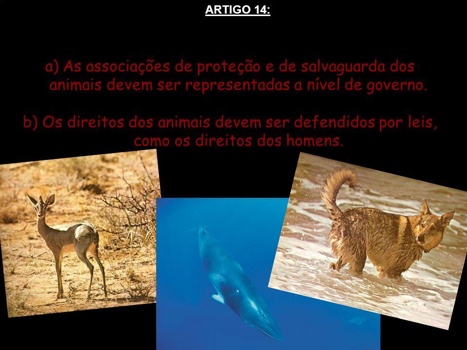 ARTIGO 14: As associações de proteção e de salvaguarda dos animais devem ser representadas a nível de governo.