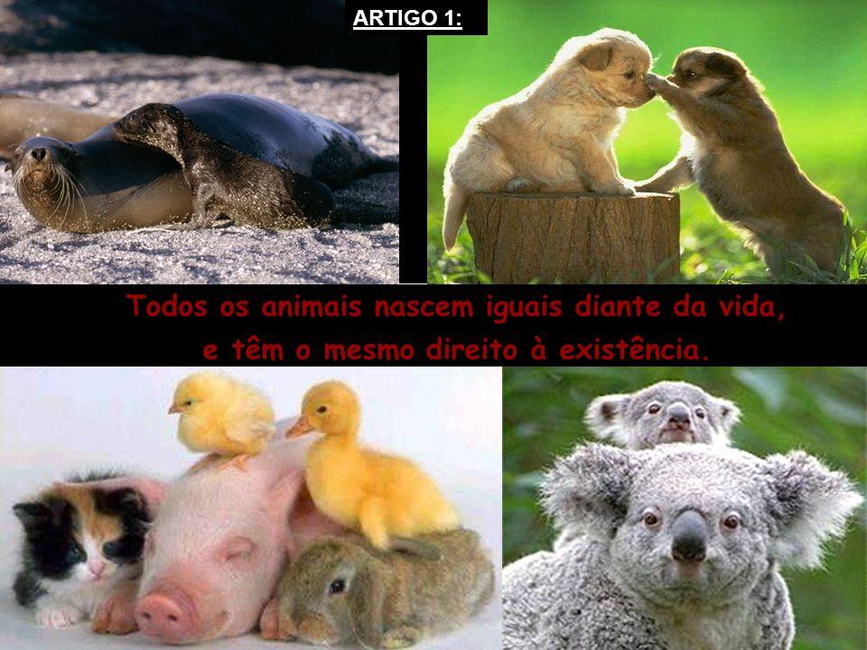 Todos os animais nascem iguais diante da vida,