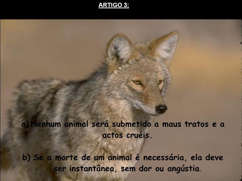 Nenhum animal será submetido a maus tratos e a actos cruéis.