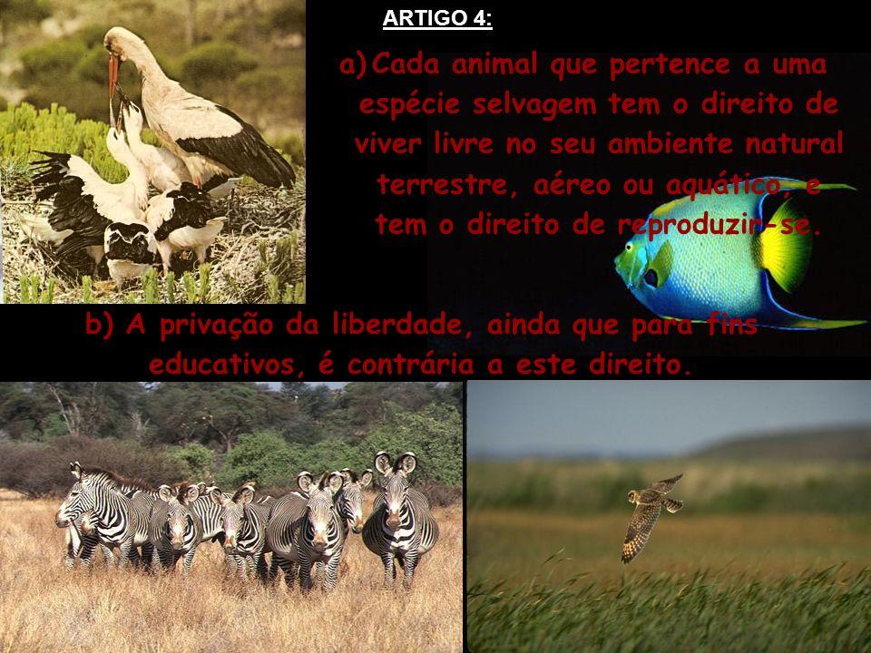 ARTIGO 4: