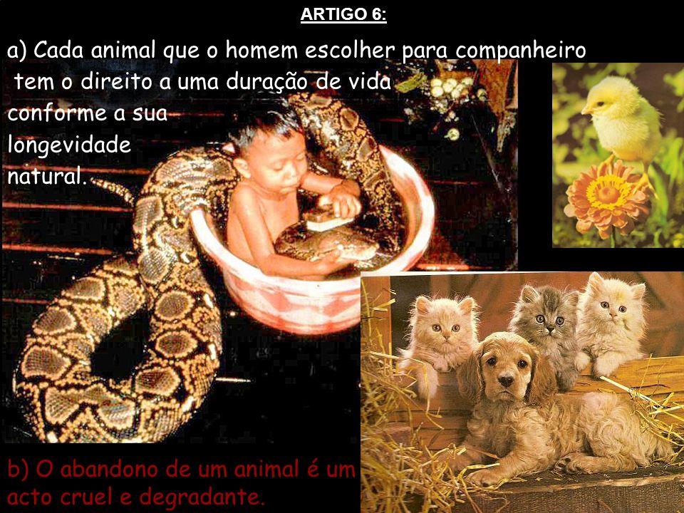 a) Cada animal que o homem escolher para companheiro