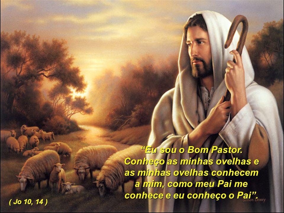 Eu sou o Bom Pastor. Conheço as minhas ovelhas e as minhas ovelhas conhecem a mim, como meu Pai me conhece e eu conheço o Pai .