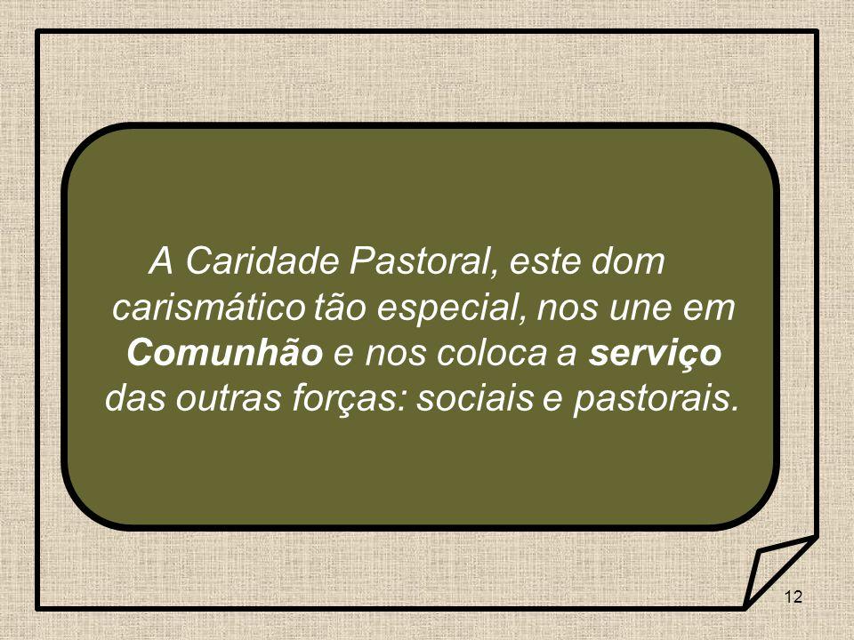 A Caridade Pastoral, este dom carismático tão especial, nos une em Comunhão e nos coloca a serviço das outras forças: sociais e pastorais.