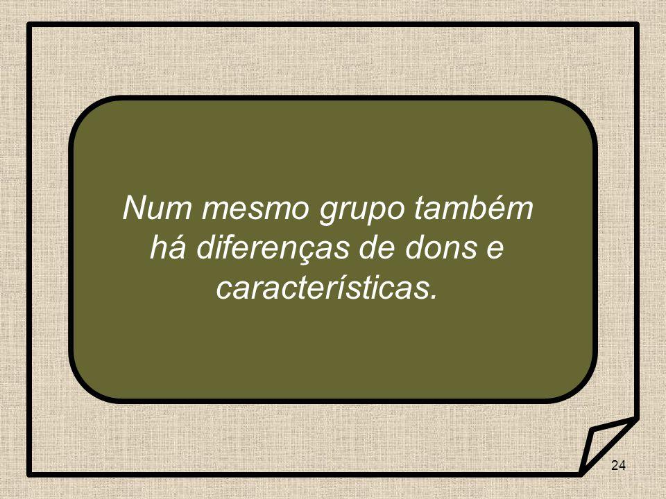 Num mesmo grupo também há diferenças de dons e características.