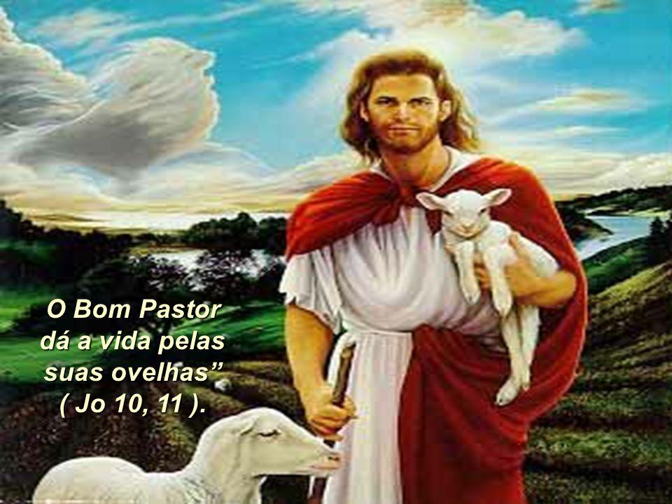 O Bom Pastor dá a vida pelas suas ovelhas