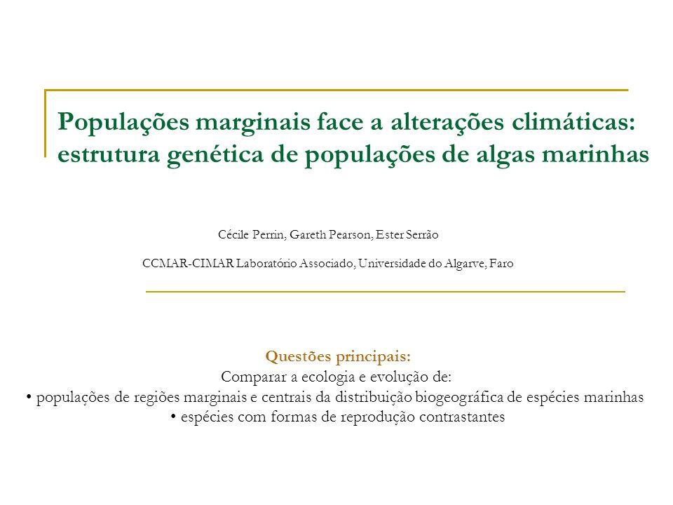 Populações marginais face a alterações climáticas: estrutura genética de populações de algas marinhas