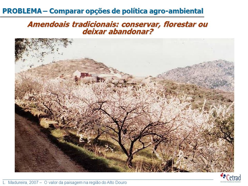Amendoais tradicionais: conservar, florestar ou deixar abandonar
