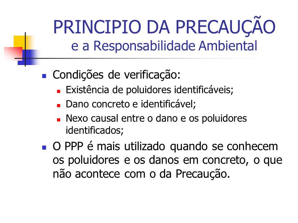 PRINCIPIO DA PRECAUÇÃO e a Responsabilidade Ambiental