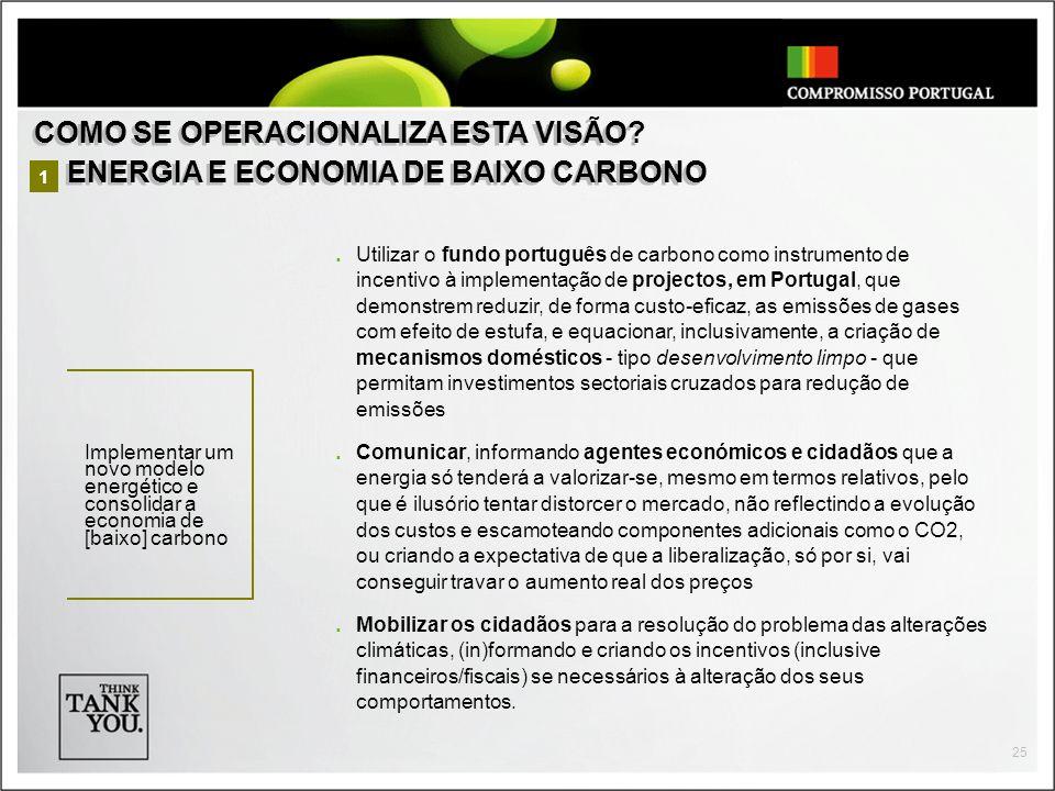 COMO SE OPERACIONALIZA ESTA VISÃO ENERGIA E ECONOMIA DE BAIXO CARBONO