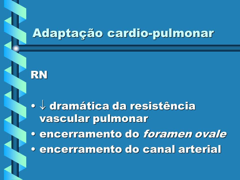 Adaptação cardio-pulmonar