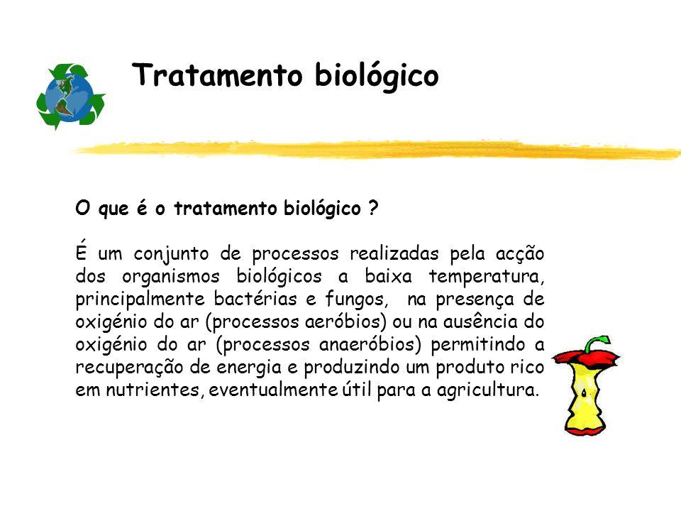 Tratamento biológico O que é o tratamento biológico