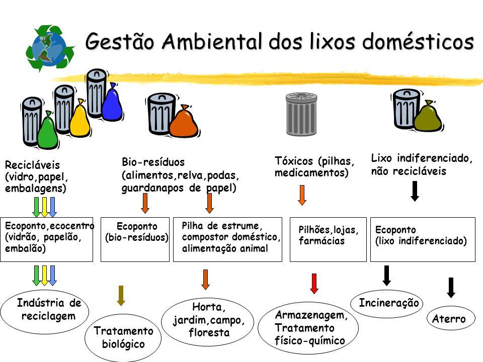Gestão Ambiental dos lixos domésticos