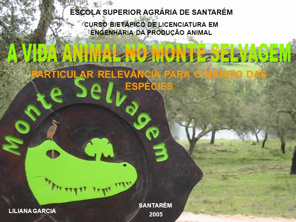 A VIDA ANIMAL NO MONTE SELVAGEM
