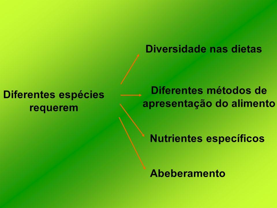 Diversidade nas dietas