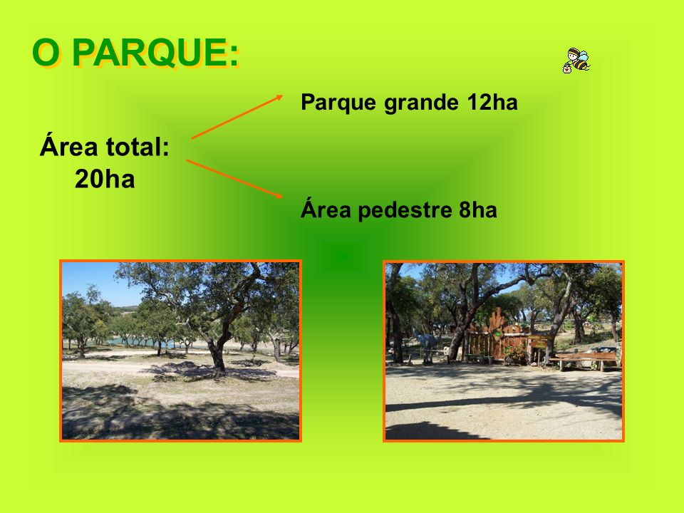 O PARQUE: Parque grande 12ha Área total: 20ha Área pedestre 8ha