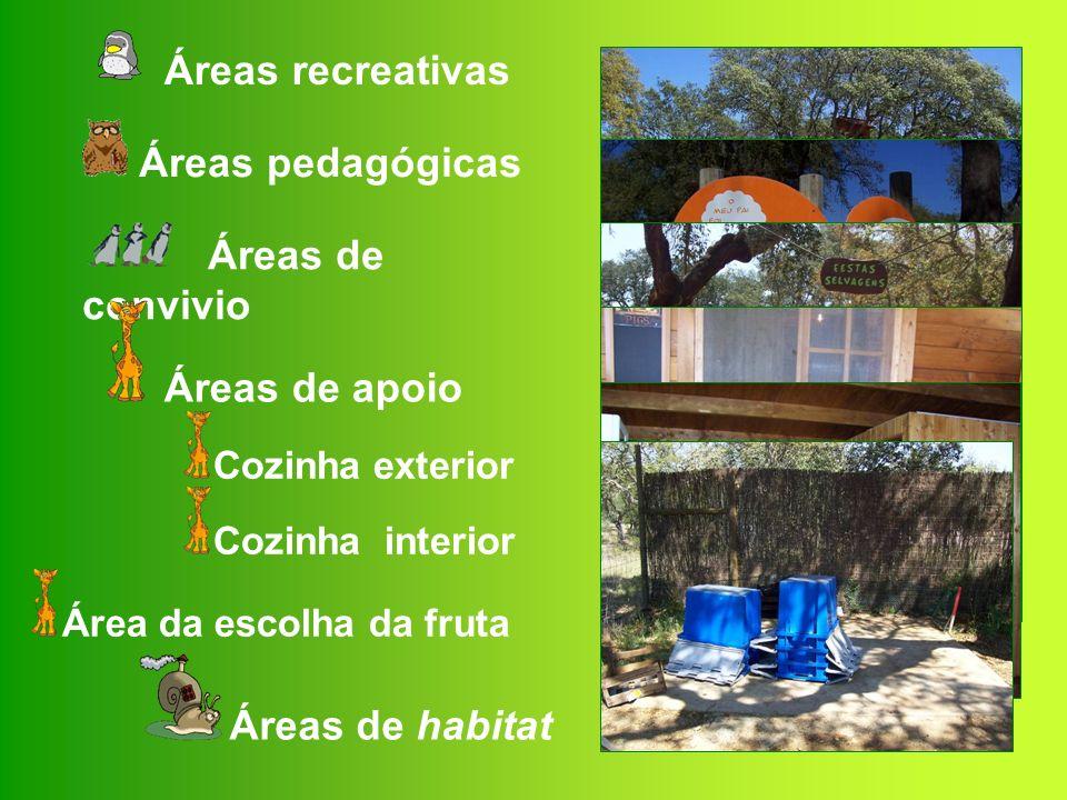 Áreas recreativas Áreas pedagógicas Áreas de convivio Áreas de apoio
