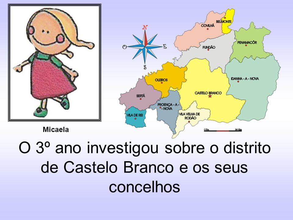Micaela O 3º ano investigou sobre o distrito de Castelo Branco e os seus concelhos