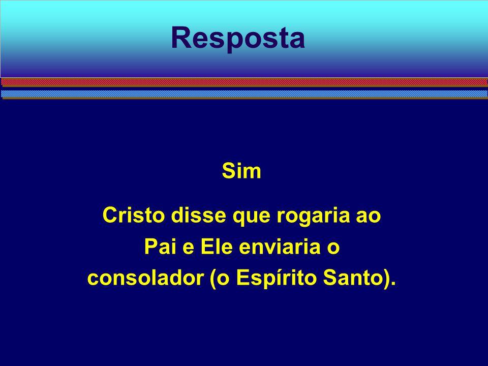 Resposta Sim Cristo disse que rogaria ao Pai e Ele enviaria o consolador (o Espírito Santo).