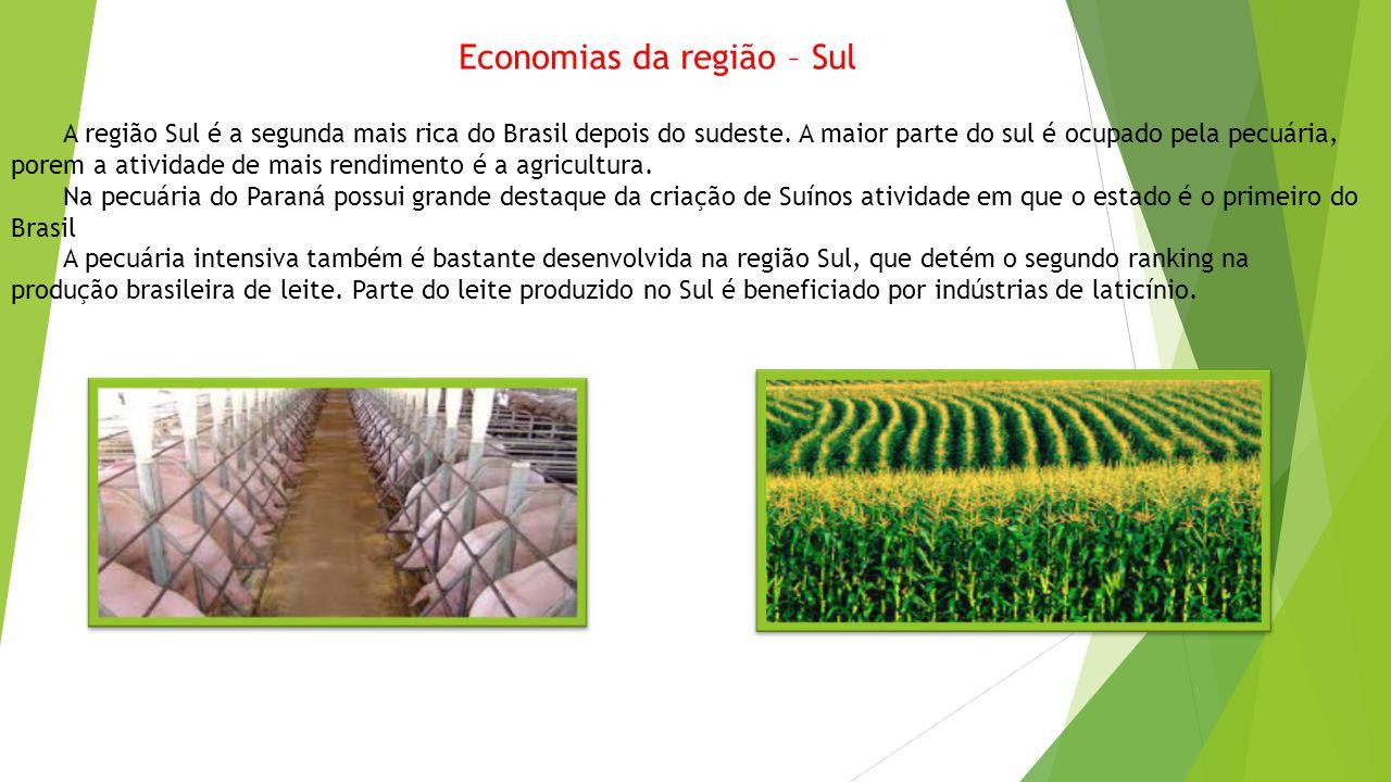 Economias da região – Sul