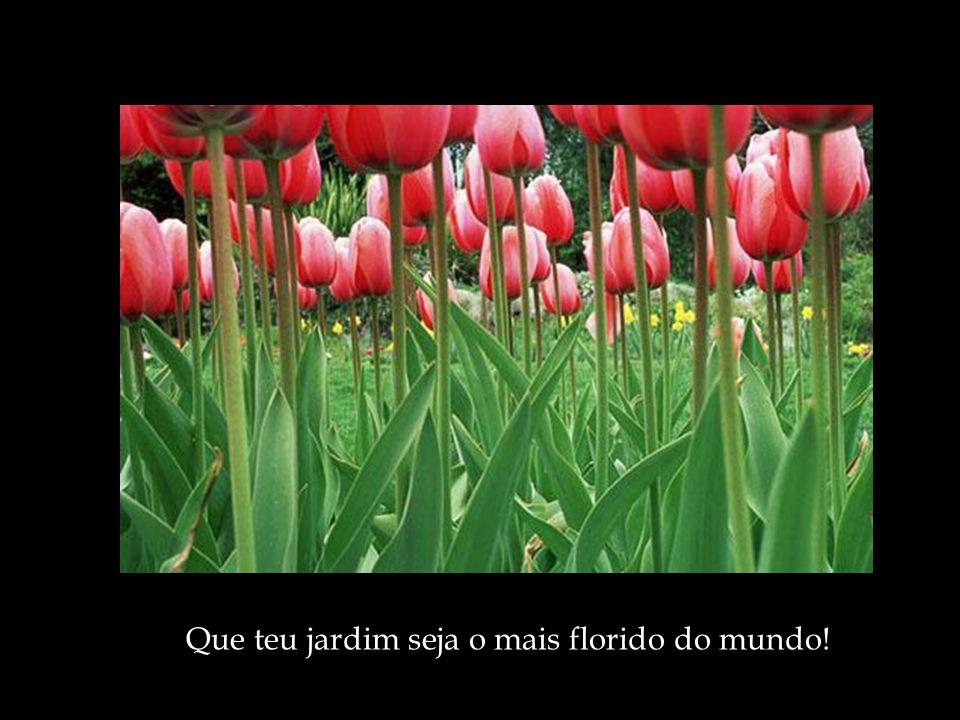 Que teu jardim seja o mais florido do mundo!