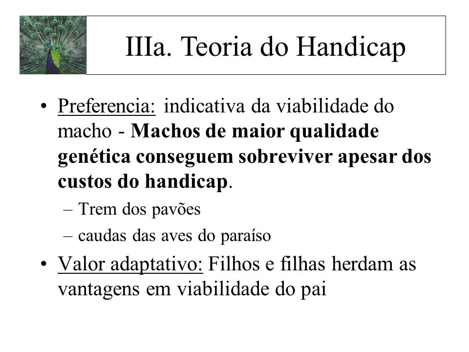 IIIa. Teoria do Handicap