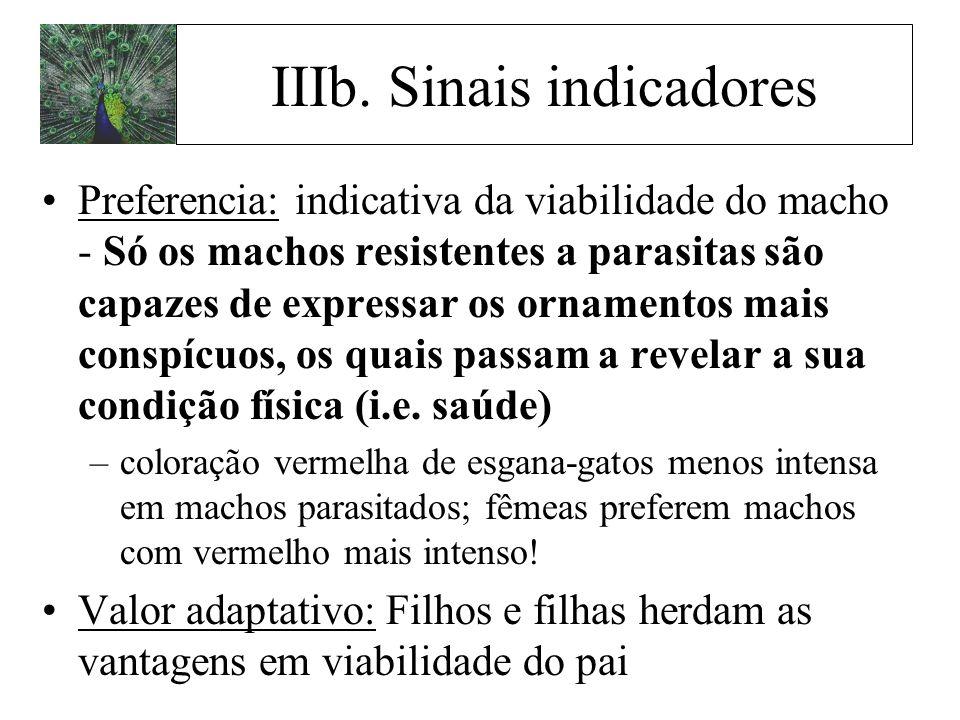 IIIb. Sinais indicadores