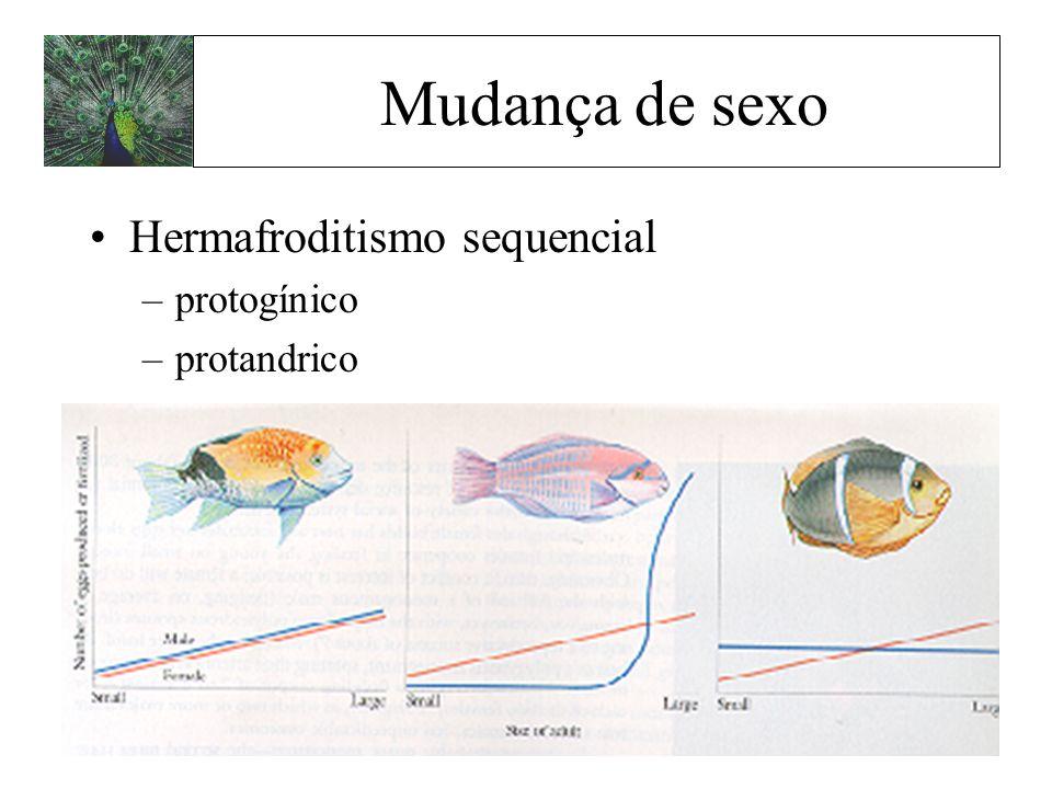 Mudança de sexo Hermafroditismo sequencial protogínico protandrico