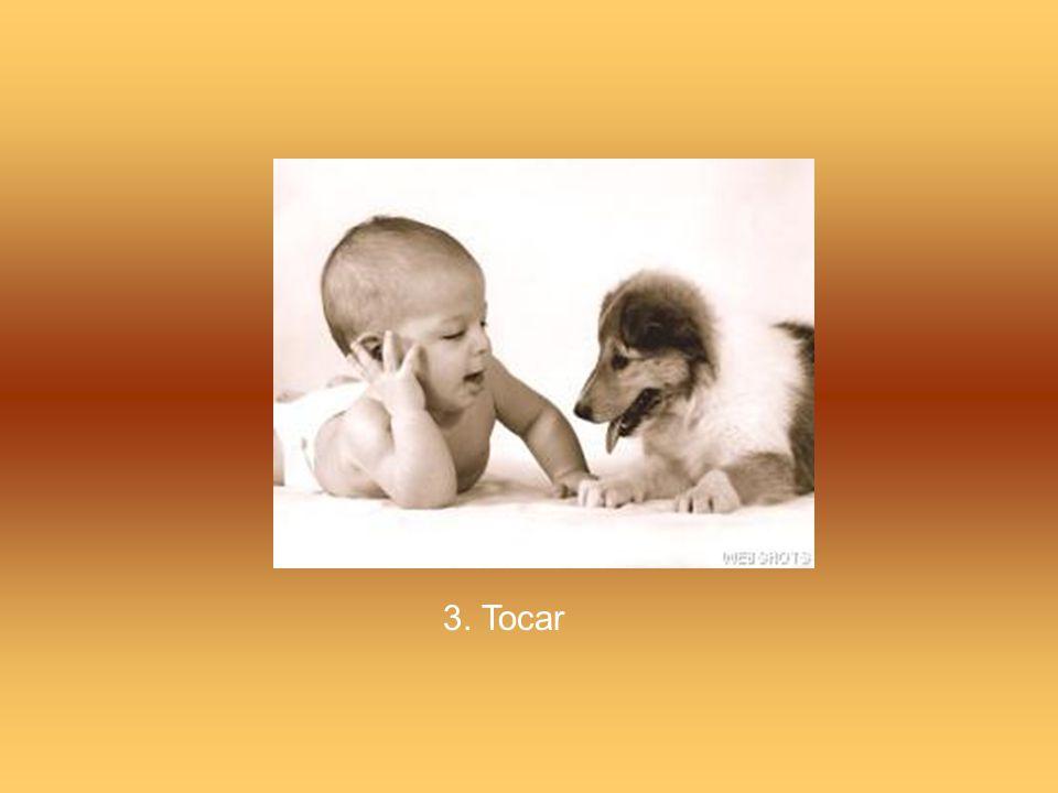 3. Tocar