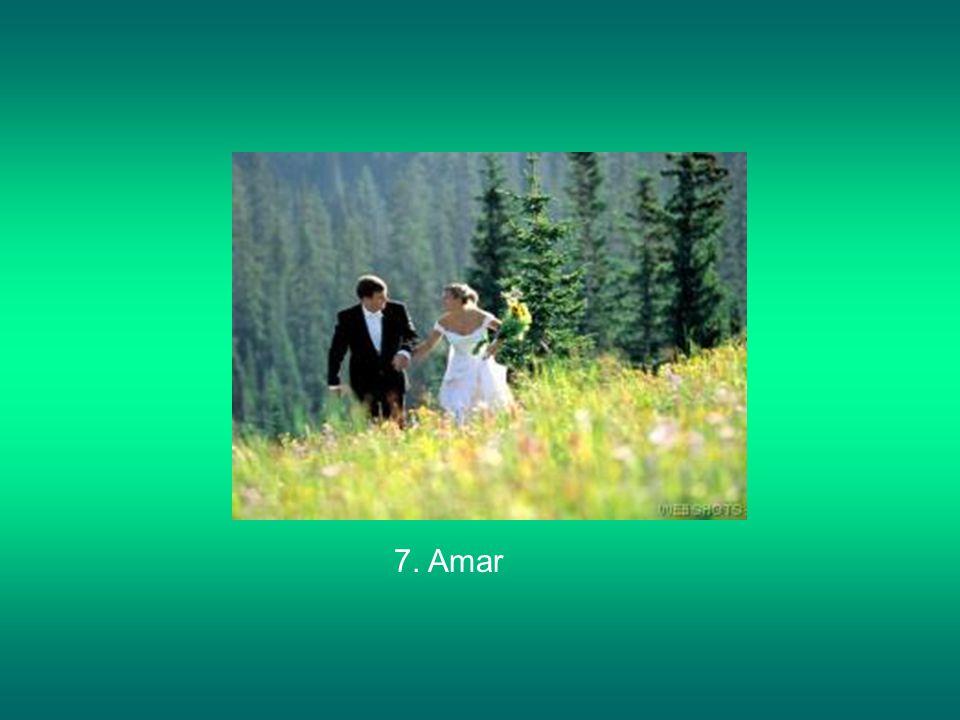7. Amar
