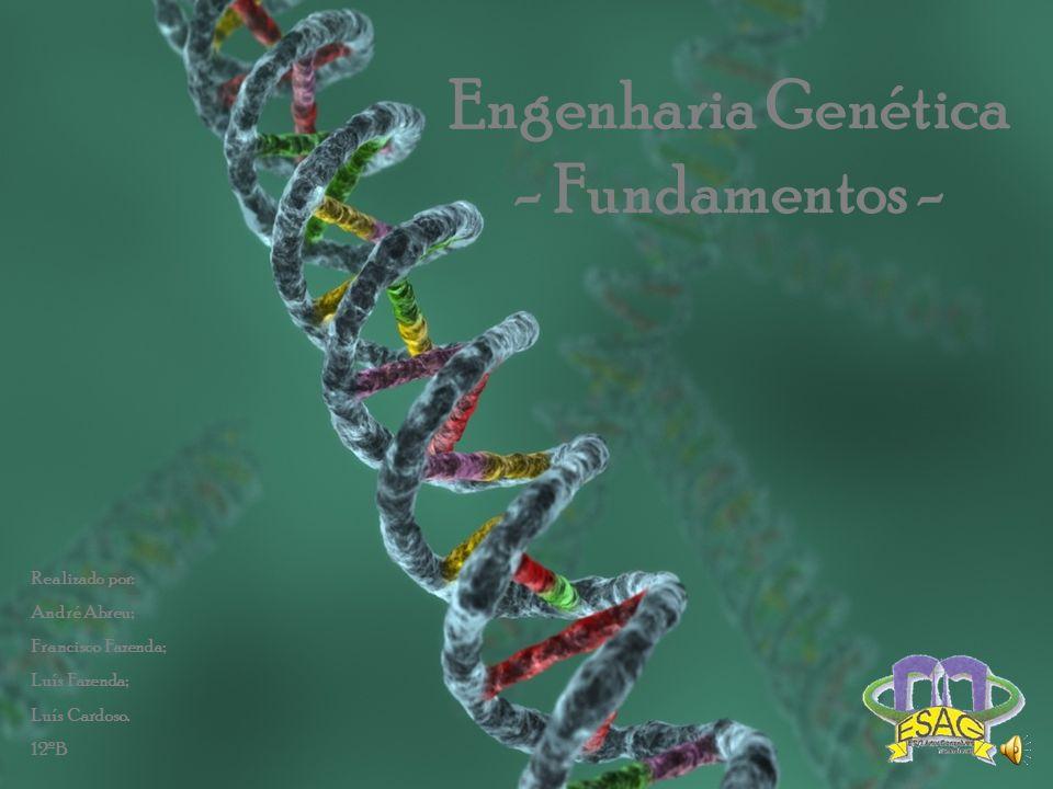 Engenharia Genética - Fundamentos -