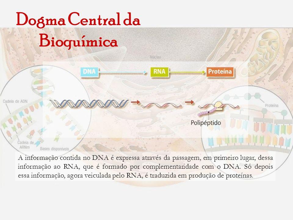 Dogma Central da Bioquímica