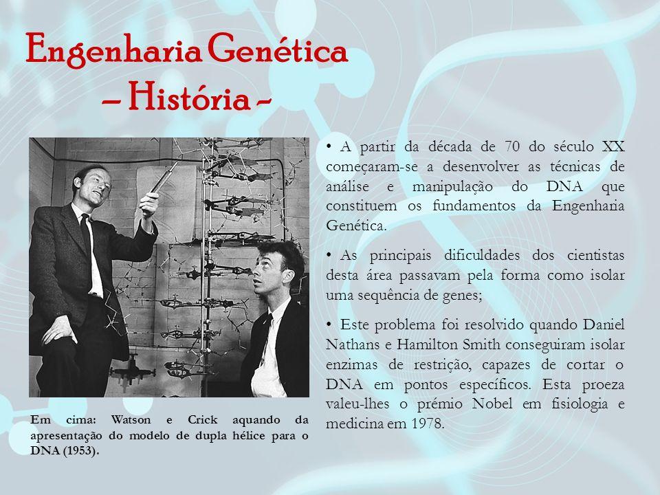 Engenharia Genética – História -