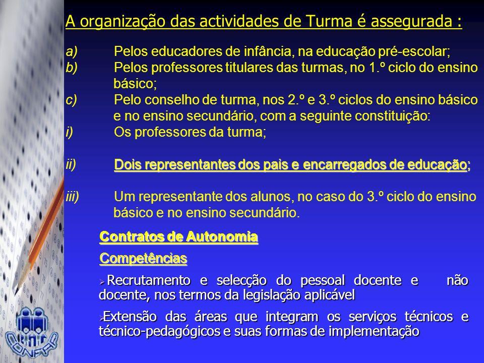 A organização das actividades de Turma é assegurada : a)