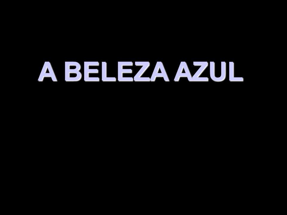 A BELEZA AZUL