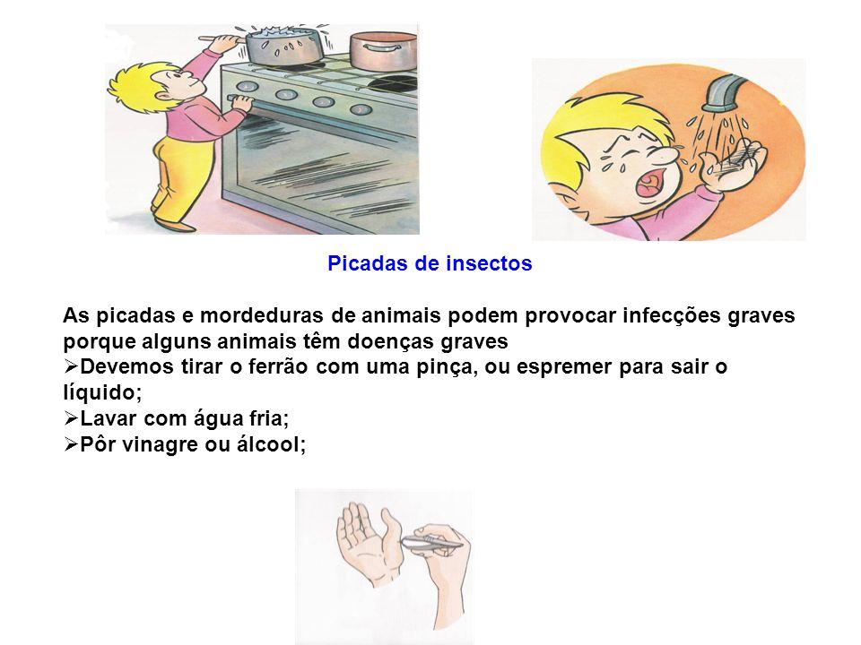 Picadas de insectos As picadas e mordeduras de animais podem provocar infecções graves porque alguns animais têm doenças graves.