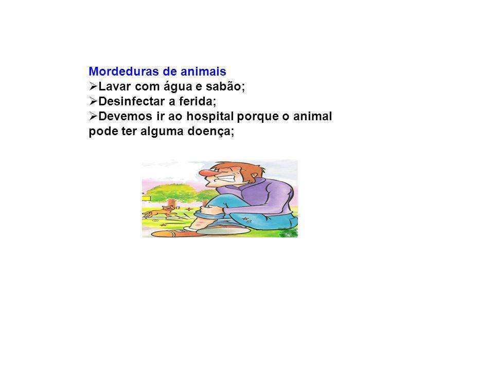 Mordeduras de animais Lavar com água e sabão; Desinfectar a ferida; Devemos ir ao hospital porque o animal pode ter alguma doença;