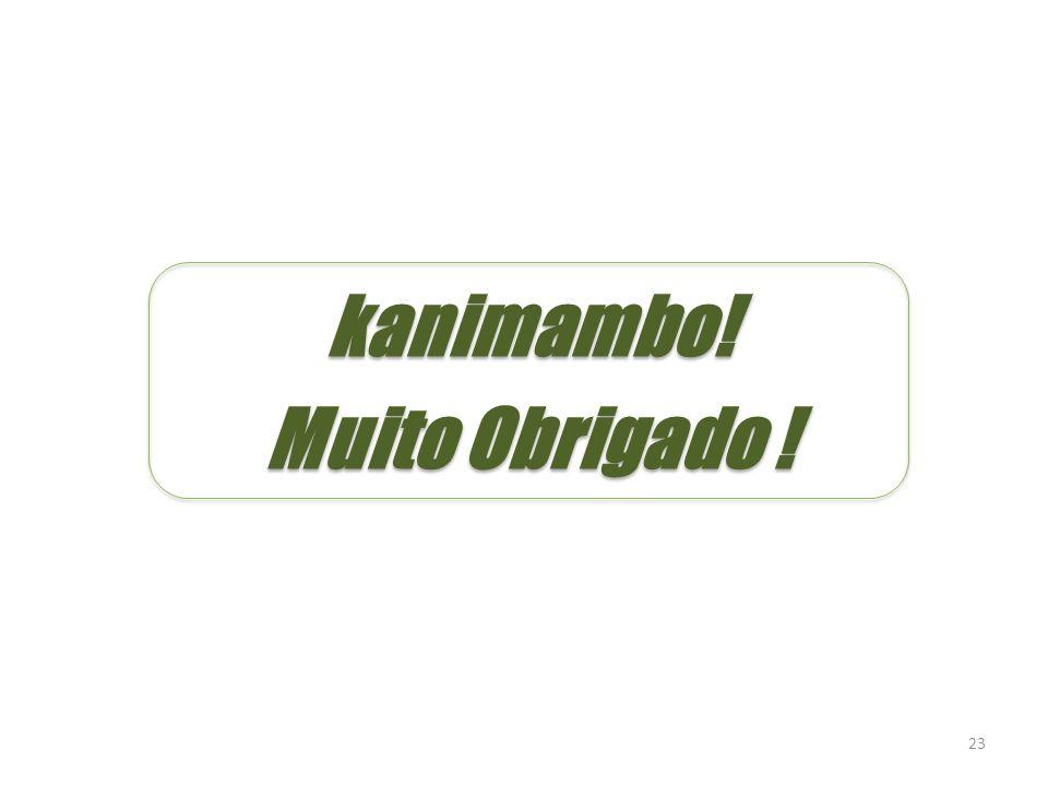 kanimambo! Muito Obrigado !