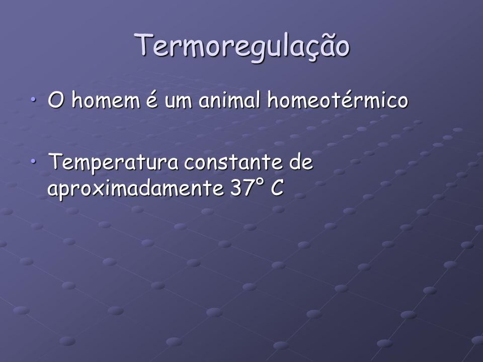 Termoregulação O homem é um animal homeotérmico