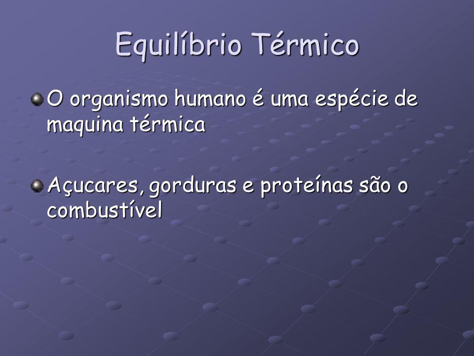 Equilíbrio Térmico O organismo humano é uma espécie de maquina térmica