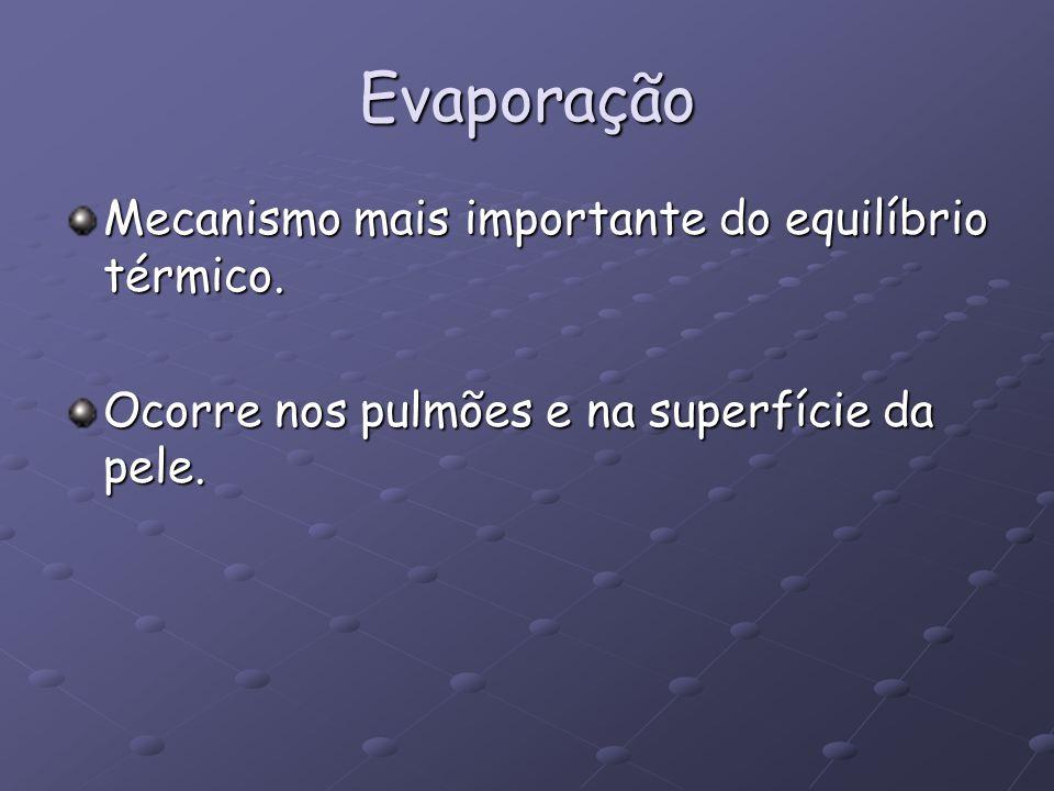 Evaporação Mecanismo mais importante do equilíbrio térmico.