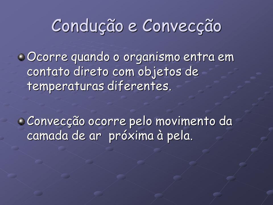 Condução e Convecção Ocorre quando o organismo entra em contato direto com objetos de temperaturas diferentes.
