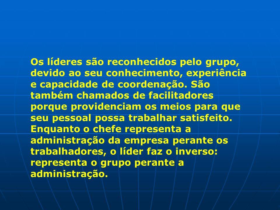 Os líderes são reconhecidos pelo grupo, devido ao seu conhecimento, experiência e capacidade de coordenação.