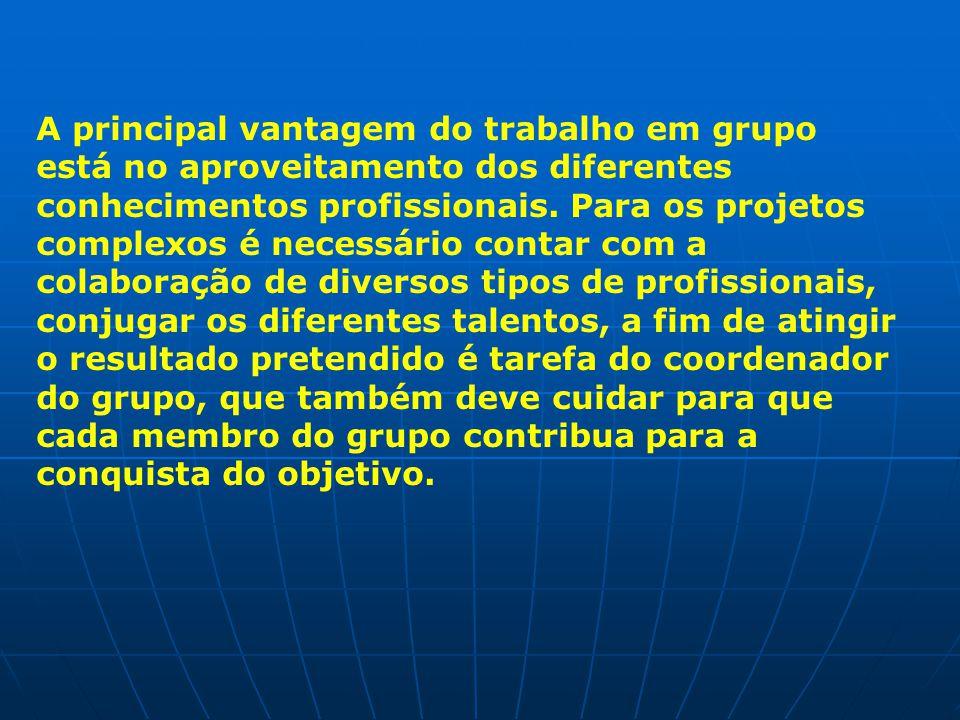 A principal vantagem do trabalho em grupo está no aproveitamento dos diferentes conhecimentos profissionais.