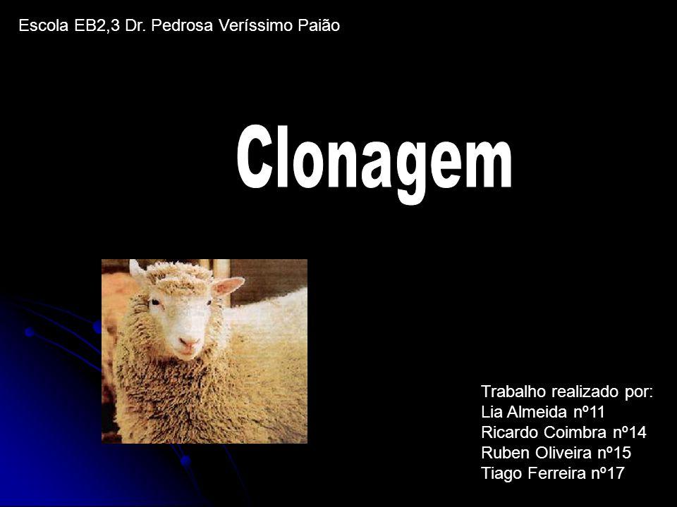 Clonagem Escola EB2,3 Dr. Pedrosa Veríssimo Paião
