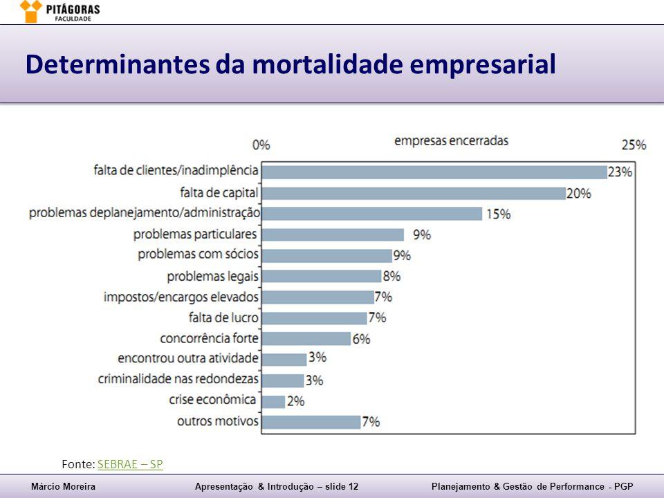 Determinantes da mortalidade empresarial