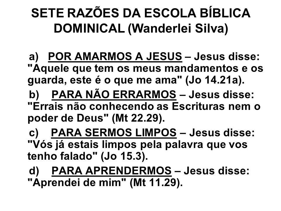 SETE RAZÕES DA ESCOLA BÍBLICA DOMINICAL (Wanderlei Silva)