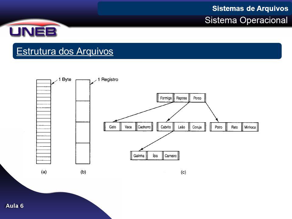 Estrutura dos Arquivos