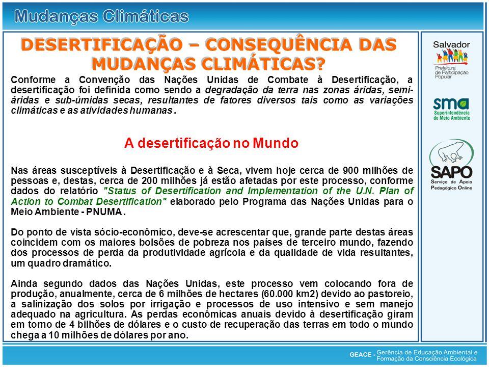 Desertificação DESERTIFICAÇÃO – CONSEQUÊNCIA DAS MUDANÇAS CLIMÁTICAS
