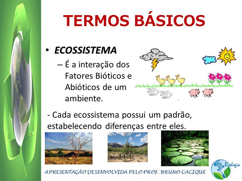 APRESENTAÇÃO DESENVOLVIDA PELO PROF. BRUNO CACIQUE